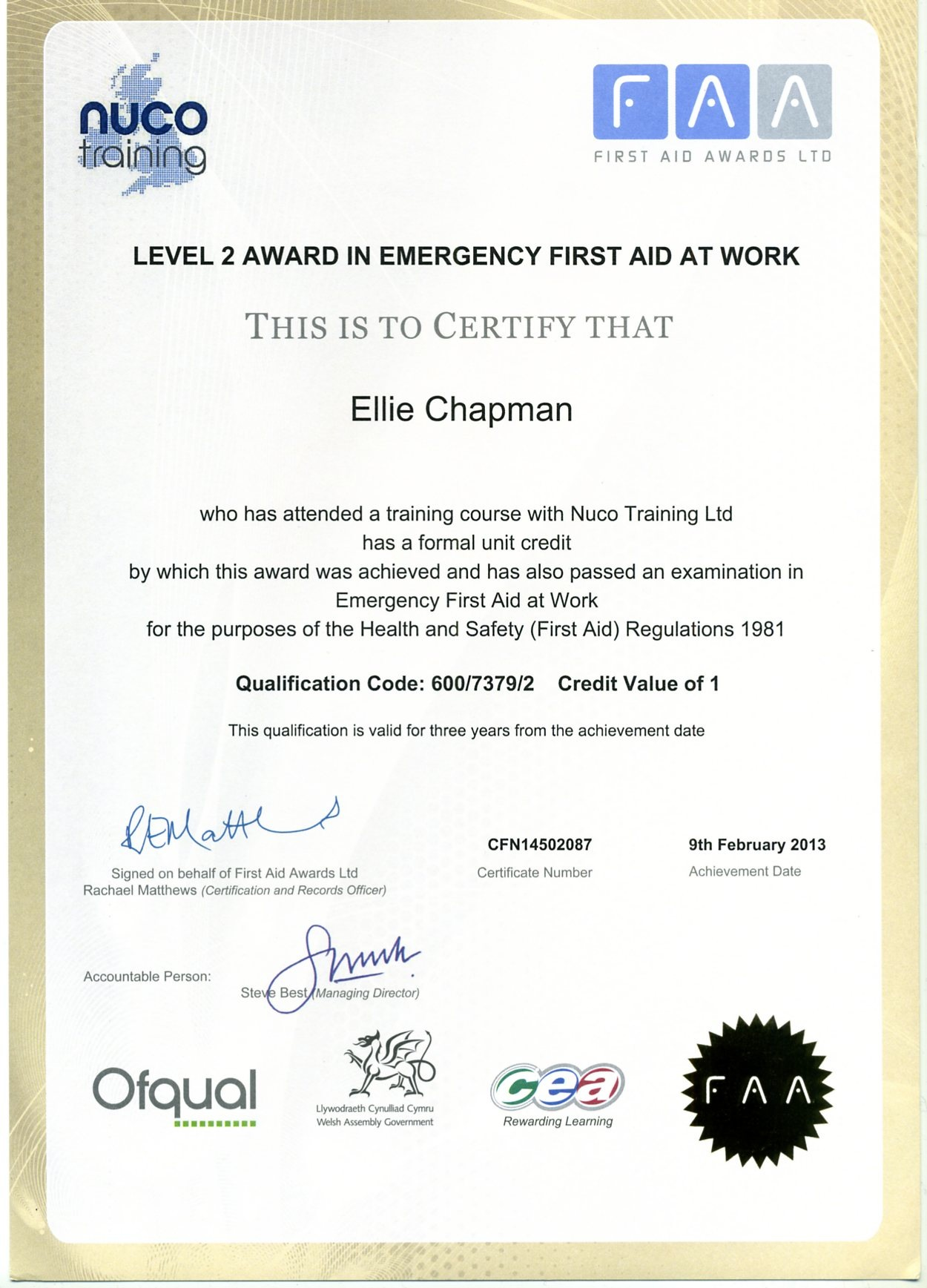 First Aid Training Certificate Template Images Templates Example  Qualification Certificate Template Images Templates Example Free Instructor Within First Aid Certificate Template